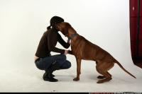 2009 01 DOG RR LOVE 05.jpg